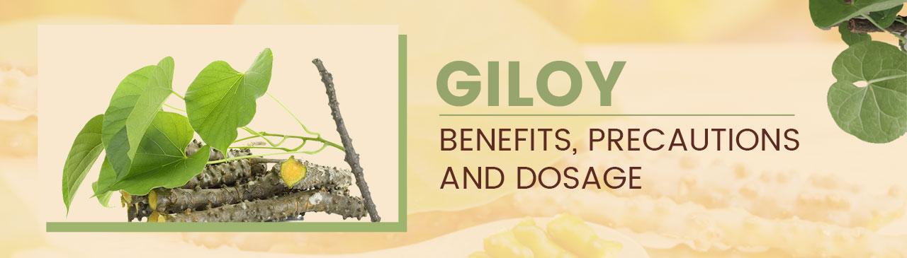 giloy benefits