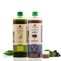 combo pack of jamun karela juice & wheatgrass juice